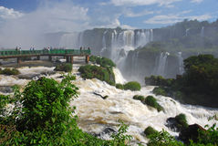 Iguazu Falls i Brasilien Royaltyfria Foton