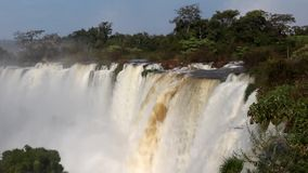 Iguazu Falls. In the Iguazu National Park. Argentina stock footage