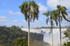 Iguazu Falls Royalty Free Stock Photography