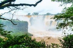 Iguazu Falls på den argentinska gränsen Royaltyfria Bilder