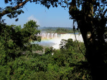 Iguazu Falls and rainbow Stock Image