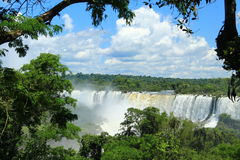 The Iguazu Falls - View from Argentina side Stock Images