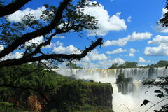 The Iguazu Falls - View from Argentina side Stock Photos