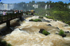 The Iguazu Falls - View from Brazil side Royalty Free Stock Images