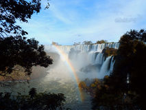 Iguazu Falls. View of the Iguazu falls. This large river and natural wonder separate Brazil and Argentina Royalty Free Stock Photos