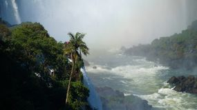 Iguazu Falls Waterfall with Rainbows and Spray as seen from the Brazil Side.  Royalty Free Stock Images