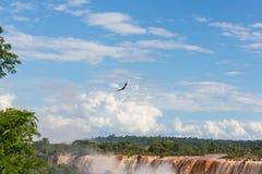 Iguazu Royalty Free Stock Photography