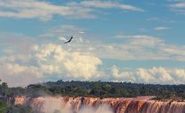 Iguazu Royalty Free Stock Photos