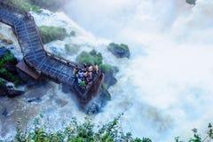Iguazu National Park Stock Image