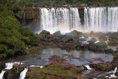 Iguazu nationalpark Arkivfoton