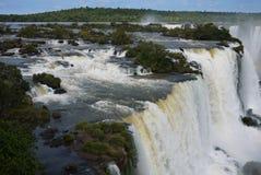 Iguazu nationalpark Arkivfoto