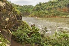 Iguazu Park Landscape Stock Photography