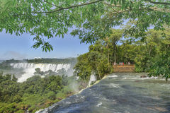Iguazu Park from the Top of Waterfalls Stock Image