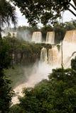 Iguazu spada veiw od Argentina przez drzew zdjęcia stock
