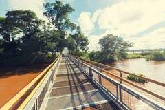 Iguazu trail Stock Photography
