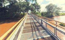 Iguazu trail Stock Images