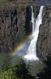 Iguazu valt - de Grens van Argentinië/van Brazilië Stock Fotografie