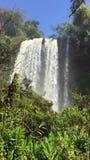 Iguazu vattenfall lager videofilmer