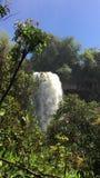 Iguazu vattenfall stock video