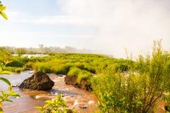 Iguazu vattenfall Arkivfoton