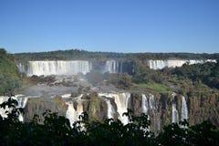 Iguazu-Wasserfälle auf sonnigem, blauem Himmel Stockbilder
