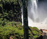 Iguazu Wasserf?lle in Argentinien stockbild