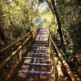 Iguazu-Wasserfall-Nationalpark Lizenzfreie Stockfotos