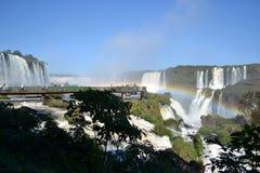 Iguazu-Wasserfallregenbogen auf sonnigem Stockbild