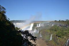 Iguazu-Wasserfallregenbogen auf sonnigem Stockfotografie