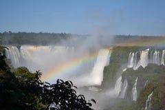 Iguazu-Wasserfallregenbogen auf sonnigem Lizenzfreie Stockfotos