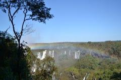 Iguazu-Wasserfallregenbogen auf sonnigem, blauem Himmel Stockbilder