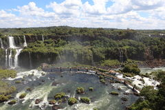 Iguazu Waterfall Stock Image