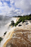 Iguazu waterfall in Argentina. Iguazu waterfalls in Argentina side, vertical view from top of waterfall royalty free stock image