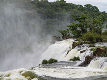 Iguazu waterfall in Argentina Stock Image