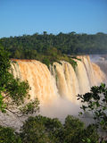 Iguazu waterfalls. Yellow Iguazu waterfalls in Brazil Royalty Free Stock Images