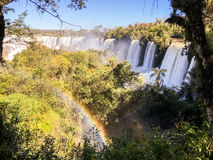 Iguazu Waterfalls National Park. Iguazu Iguacu falls, largest series of waterfalls on the planet, located between Brazil, Argentina, and Paraguay with up to 275 Stock Image