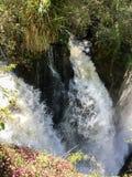 Iguazu Waterfalls National Park Royalty Free Stock Photo