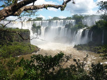 Iguazu waterfalls Stock Photos