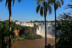 Iguazu waterfalls. View from Argentina Royalty Free Stock Photos