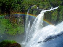 Free Iguazu3 Stock Photography - 1522572