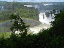 Iguazudalingen met regenboog stock foto's