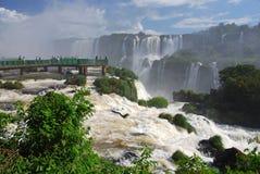 Iguazudalingen van Brazilië Royalty-vrije Stock Foto's