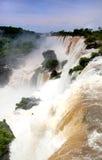 Iguazzu Falls. Beautiful Iguazzu falls seen from Argentinian side Royalty Free Stock Image