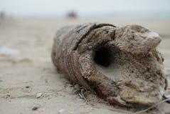 Ihålig timmer på stranden Arkivfoton