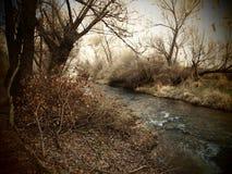 Ihlara Valley. Flowing river at Ihlara Valley, Cappadocia, Turkey Royalty Free Stock Photography