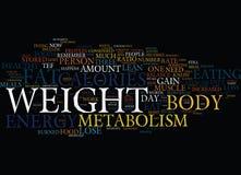 Ihr Metabolismus und fettes Verlust-Text-Hintergrund-Wort-Wolken-Konzept Stockfotos