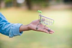 Ihre H?nde und Ihr Einkaufswagen werden beide untergebracht lizenzfreie stockfotos