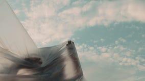 Ihre Plastikgrenzen erfahrende und verschwindene Frau stock video footage