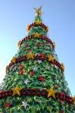 ii结构树xmas 免版税库存图片