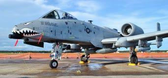 A-10 II/Warthog piorun Obraz Stock